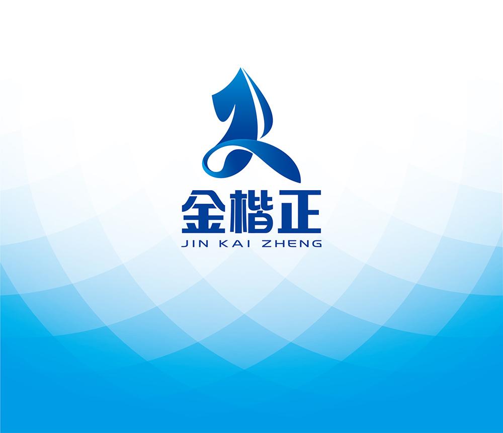 金楷正标志VI网站设计